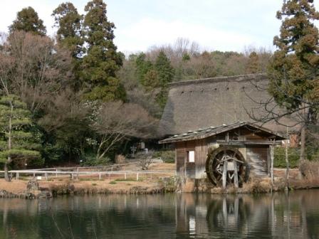 東山植物園の庭です!